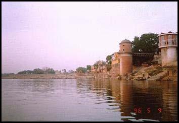 Ganges Delta Flora Amp Fauna | RM.